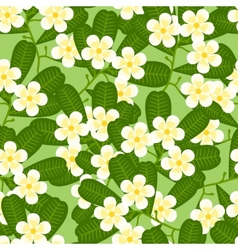 Seamless tropical pattern with stylized plumeria vector
