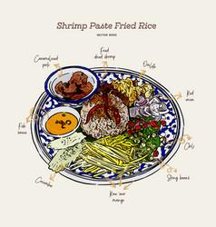 Thai fried rice with shrimp paste khao kluk kapi vector