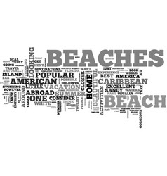 why go abroad when you have american beaches text vector image