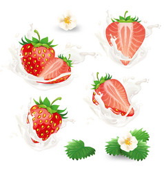 set of whole and half strawberries with vector image