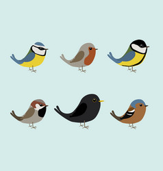 Cute songbirds vector