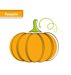 flat orange pumpkin market logo with black contour vector image