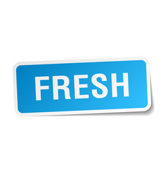 Fresh blue square sticker isolated on white vector