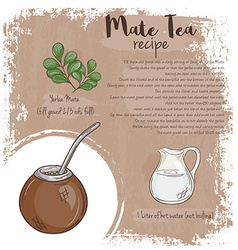 Hand drawn of mate tea recipe with list of vector