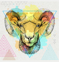 hipster realistic animal ram or mouflon vector image