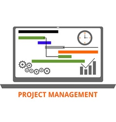 project management vector image