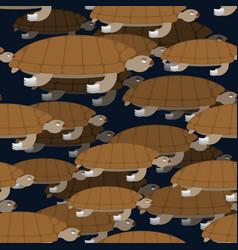 water turtle seamless pattern marine animal vector image