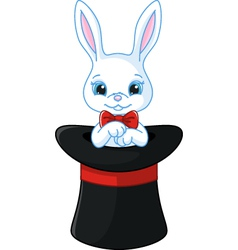 White rabbit in a hat vector