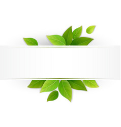 label with fresh green leaves vector image vector image