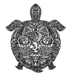patterned turtle on white vector image vector image