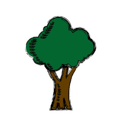 cartoon tree natural forest foliage ecology icon vector image