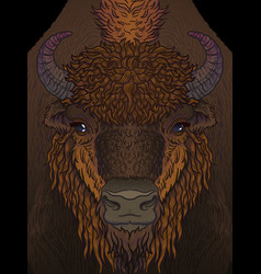 European brown zubr buffalo bison animal vector