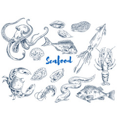 Exotic seafood monochrome sketch set vector