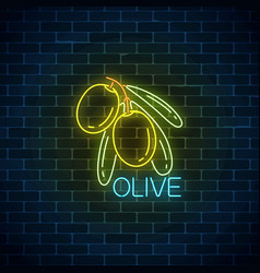glowing neon sign of olive branch with leaves vector image