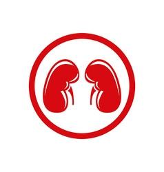 Human Kidney Single flat icon symbol vector image