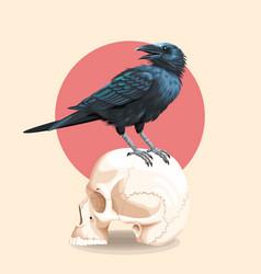 Raven on skull vector