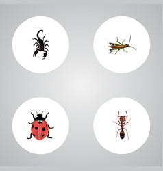 Realistic poisonous ladybird emmet and other vector