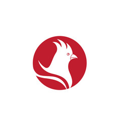 rooster logo template vector image