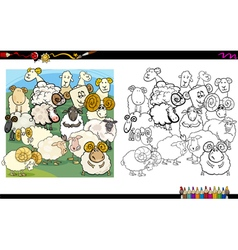 Sheep characters coloring book vector