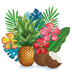 tropical garden with pineapple and coconut vector image