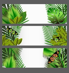 Tropical green leaves set vector image