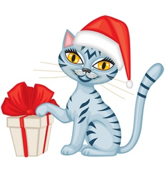 Winter tabby cat with a gift vector image