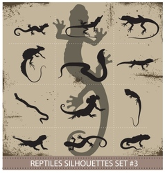 Big collection of reptiles silhouettes vector image