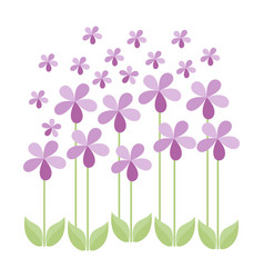floral design pink flowers greeting card vector image