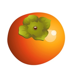 Icon persimmon vector