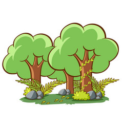 many big trees in forest background vector image