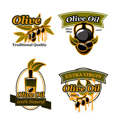 olive oil extra virgin products design vector image