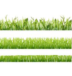 realistic grass borders set vector image