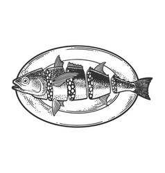 salami sausage fish sketch vector image