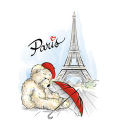 Teddy bear and eiffel tower paris france vector