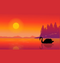 Silhouette of swan on lake nature scenery vector