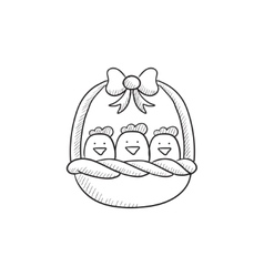 Basket full of easter chicks sketch icon vector image