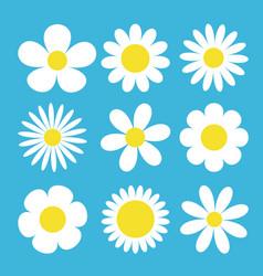 camomile set white daisy chamomile icon cute vector image