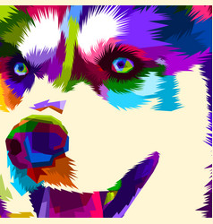 close up face husky vector image