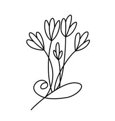 design with line art flowers transparent backdrop vector image