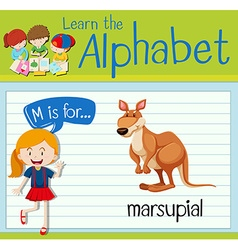 Flashcard letter M is for marsupial vector image