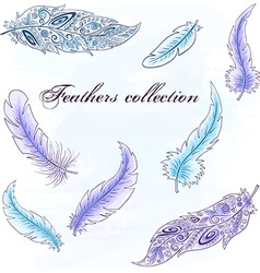 hand drawn set of feathers Can be used for vector image