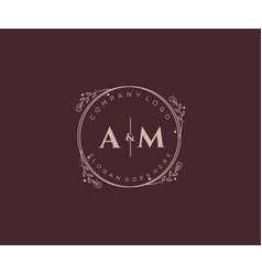Initial am letters decorative luxury wedding logo vector