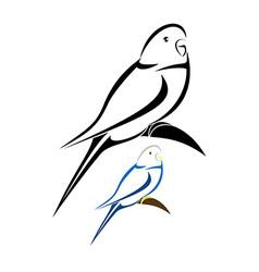Parakeet vector