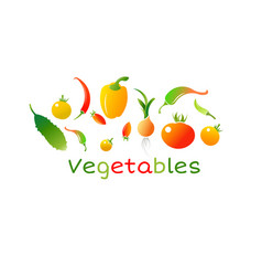 set fresh healthy vegetables fruits and vector image
