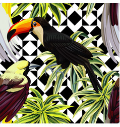 tropical birds and plants pattern geometric vector image