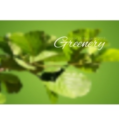 Trend color of the year 2017 greenery background vector