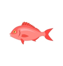 Sea Fish in Pink Color Isolated vector image