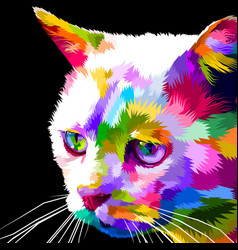 face of cat on pop art vector image
