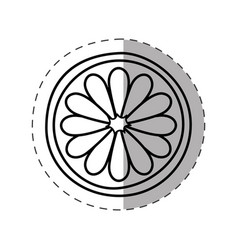 flower spring symbol monochrome vector image