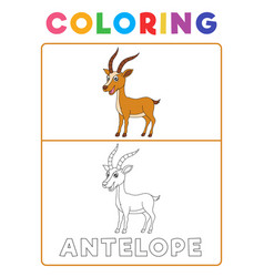 funny antelope deer animal coloring book with vector image
